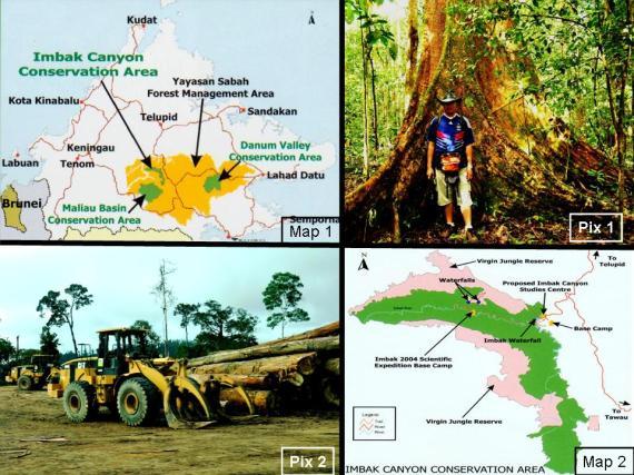 Conservation and Destruction